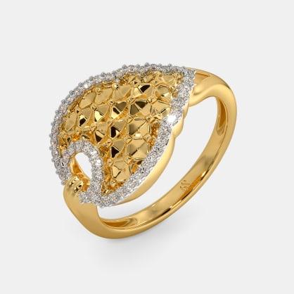 The Aravalli Ring